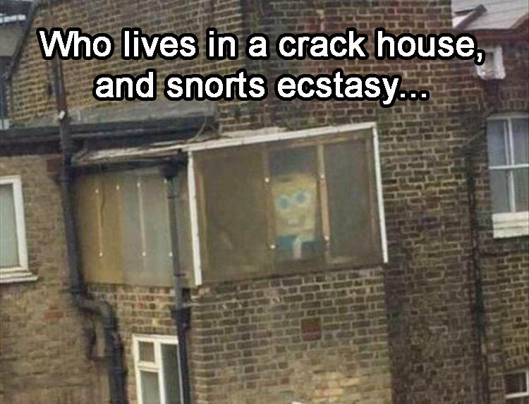 a-who-lives-in-a-crack-house