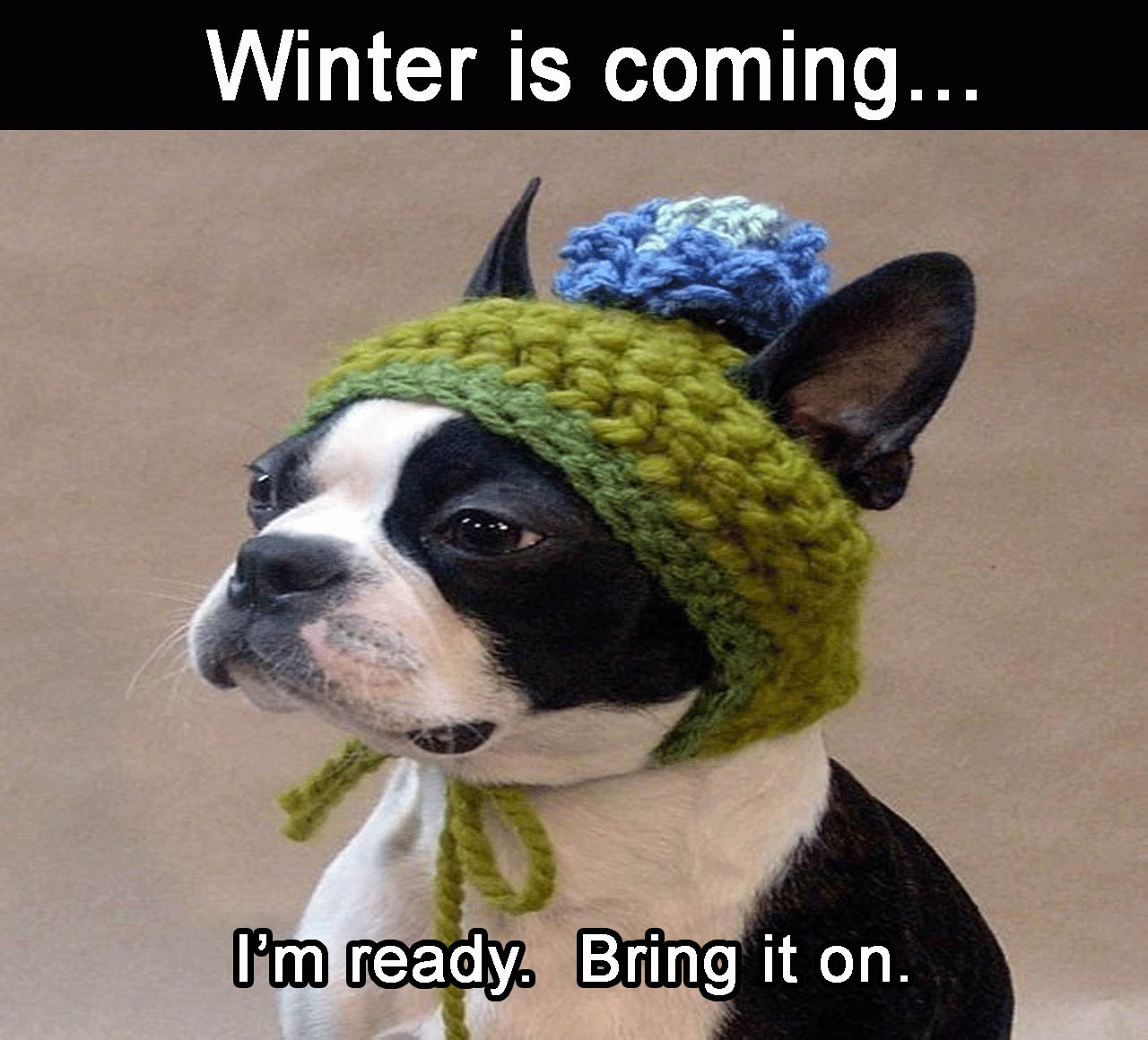 b-winter-is-coming-im-ready