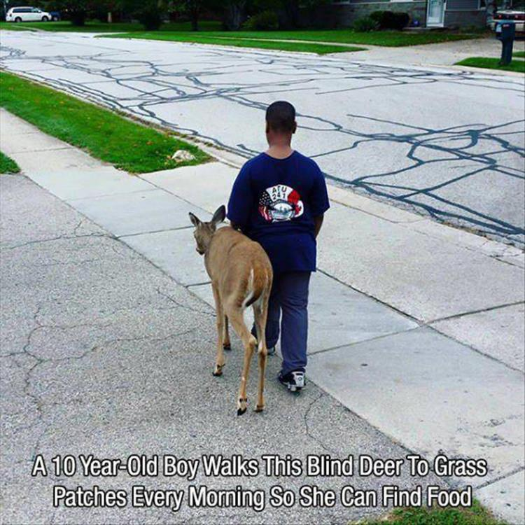 faith-in-humanity-restored-11