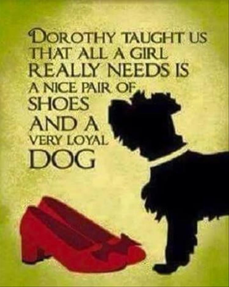 Quotes About Shoes And Friendship: Quotes Of The Day