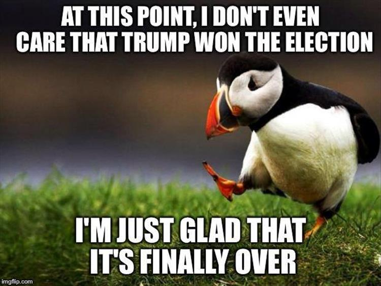 trump-wins-the-election