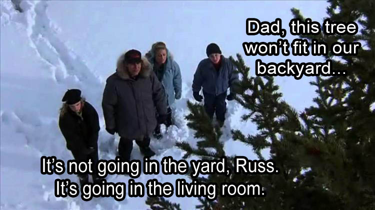 Funny Christmas Tree Quotes: Real Life National Lampoon Christmas Trees Aren't Going In