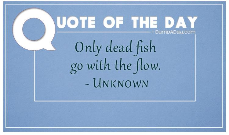 Top ten quotes of the day for Only dead fish go with the flow