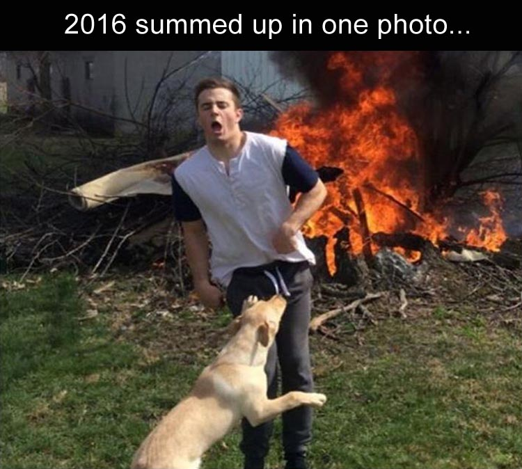 funny-2016-funny-picture