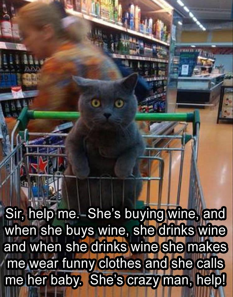 help-me-shes-buying-wine-when-she-drinks-it-she-gets-crazy