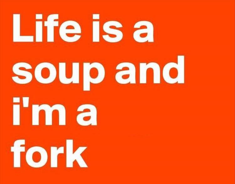 life-is-a-soup