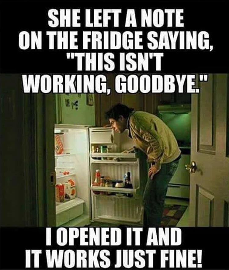 the-fridge-is-working-funny-quotes