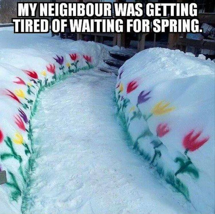 waiting-for-spring