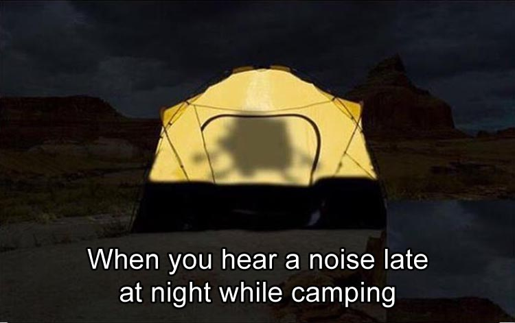 when-you-hear-a-noise-while-camping