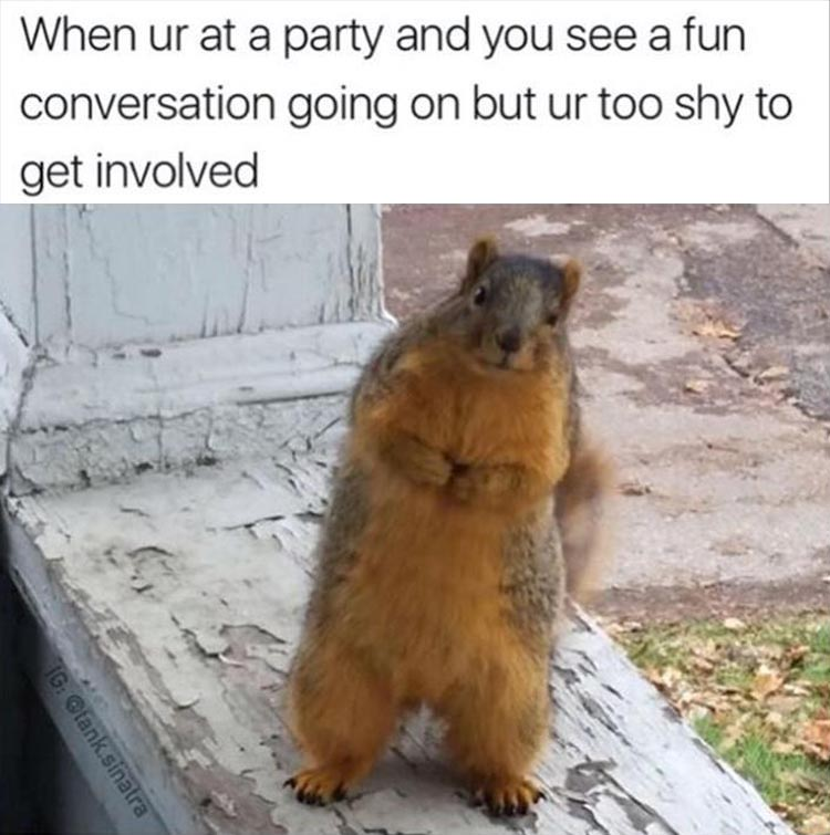 youre-at-a-party