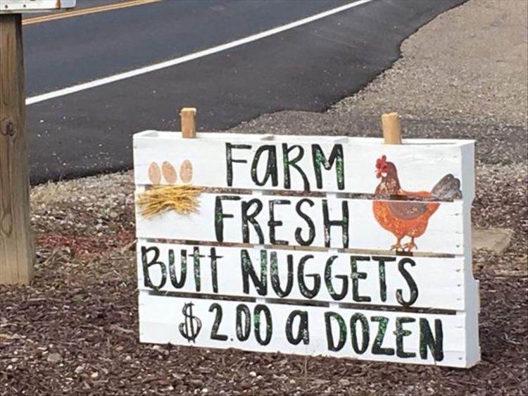Chicken Nugget Quotes: Funny Pictures Of The Day
