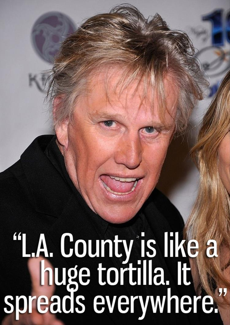 Gary Busey is nuts (3)
