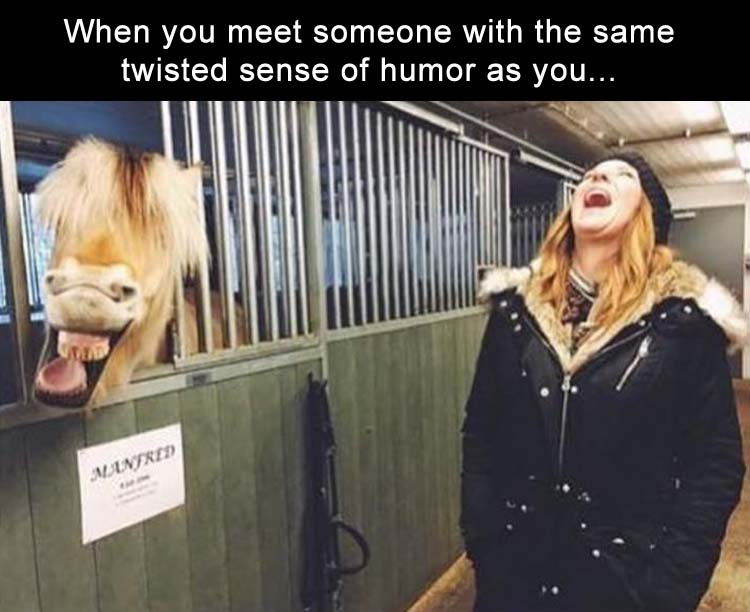 when you meet someone with your same sense of humor