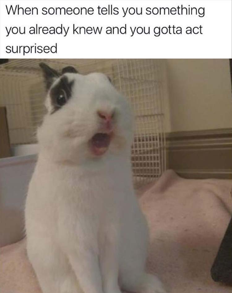 you gotta act surprised