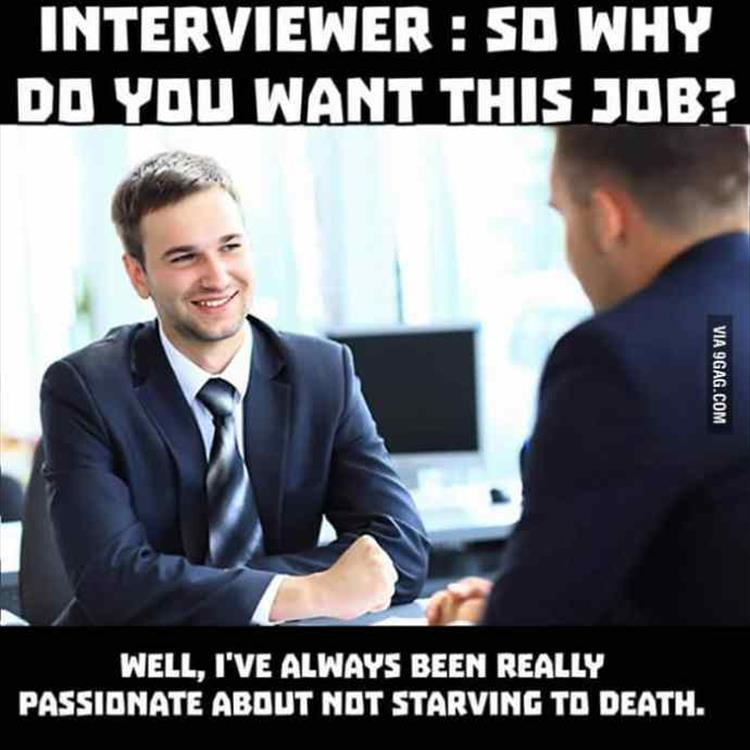 Funny Meme Job : Funny memes you should see before going for a job