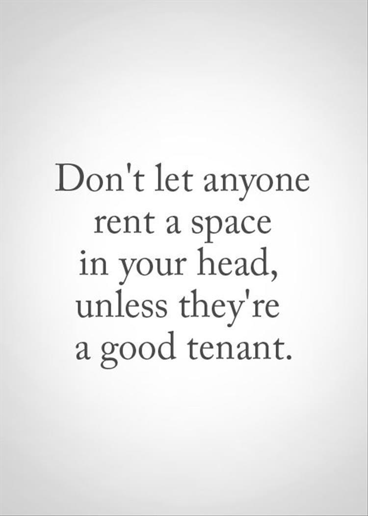Rent Quotes Top Ten Quotes Of The Day