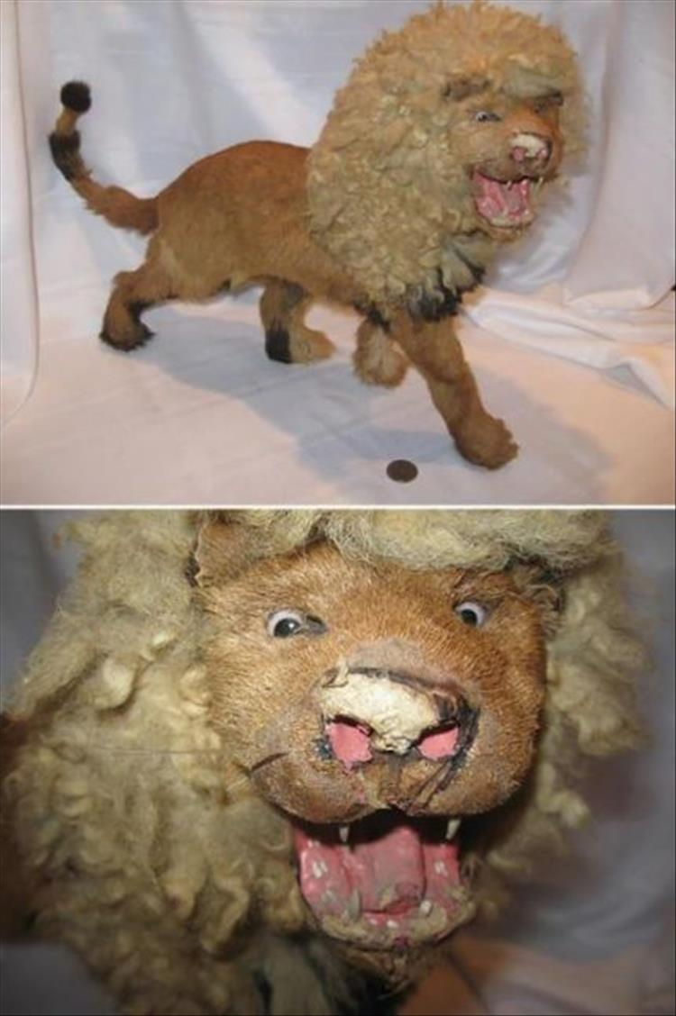 Taxidermy Fails Are What Nightmares Are Made Of - 18 Pics