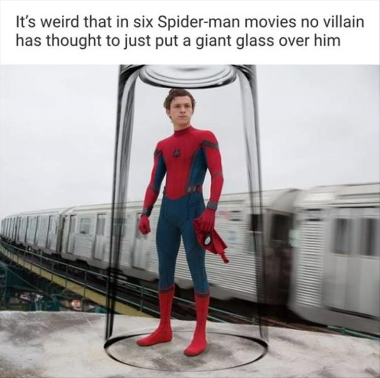 the-spiderman-movie.jpg