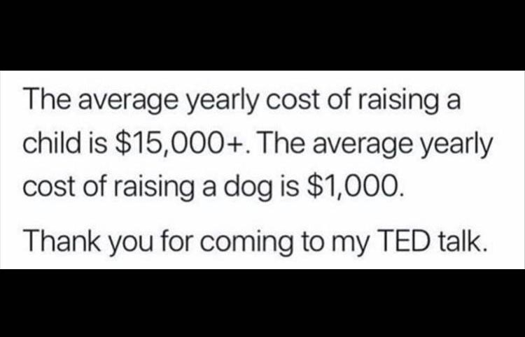 you-have-ted-talk.jpg