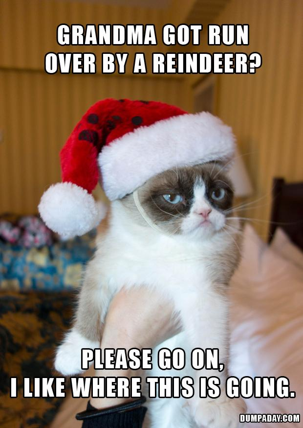 Image result for Grandma got run over by a reindeer funny