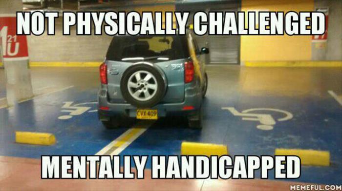 mentally handicap