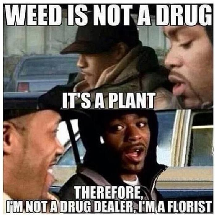 weed is a plant