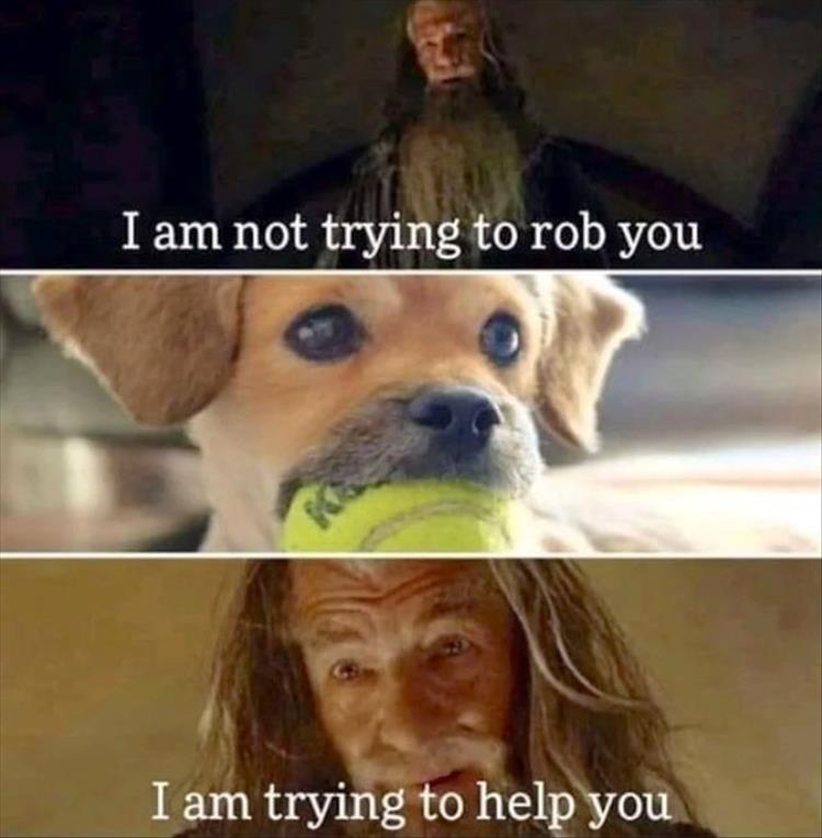 you-got-the-ball-meme-1.jpg