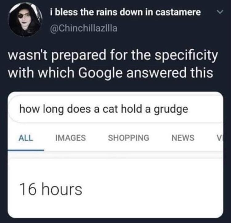 you-thanks-google.jpeg