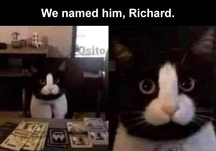 we-call-him-Richard.jpg