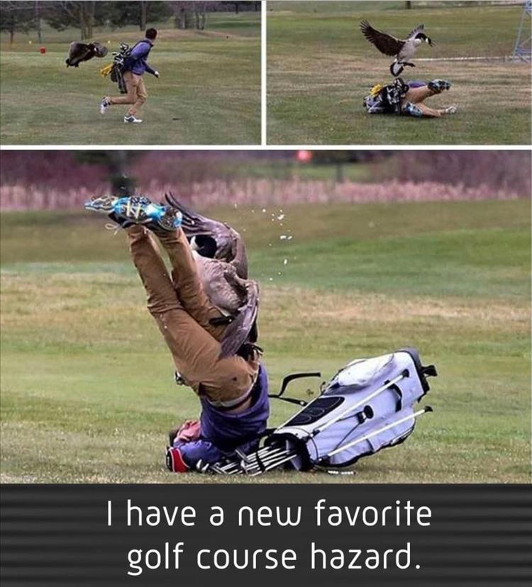 when-youre-golfing.jpg